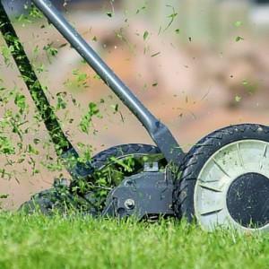 Foxbank Plantation Lawn