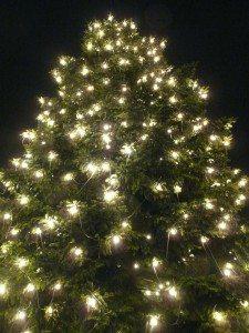 Moncks Cornery Holiday Lights Driving Tour